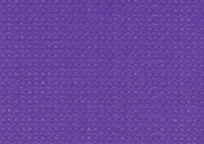 PurpleZ16
