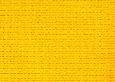 YellowZ16